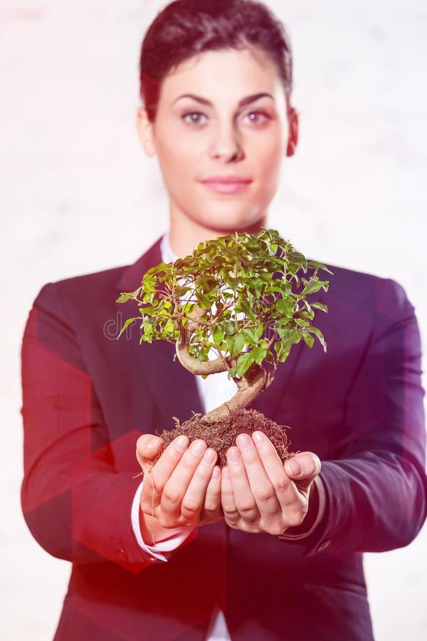 Confident young businesswoman holding plant against wall at office stock photos
