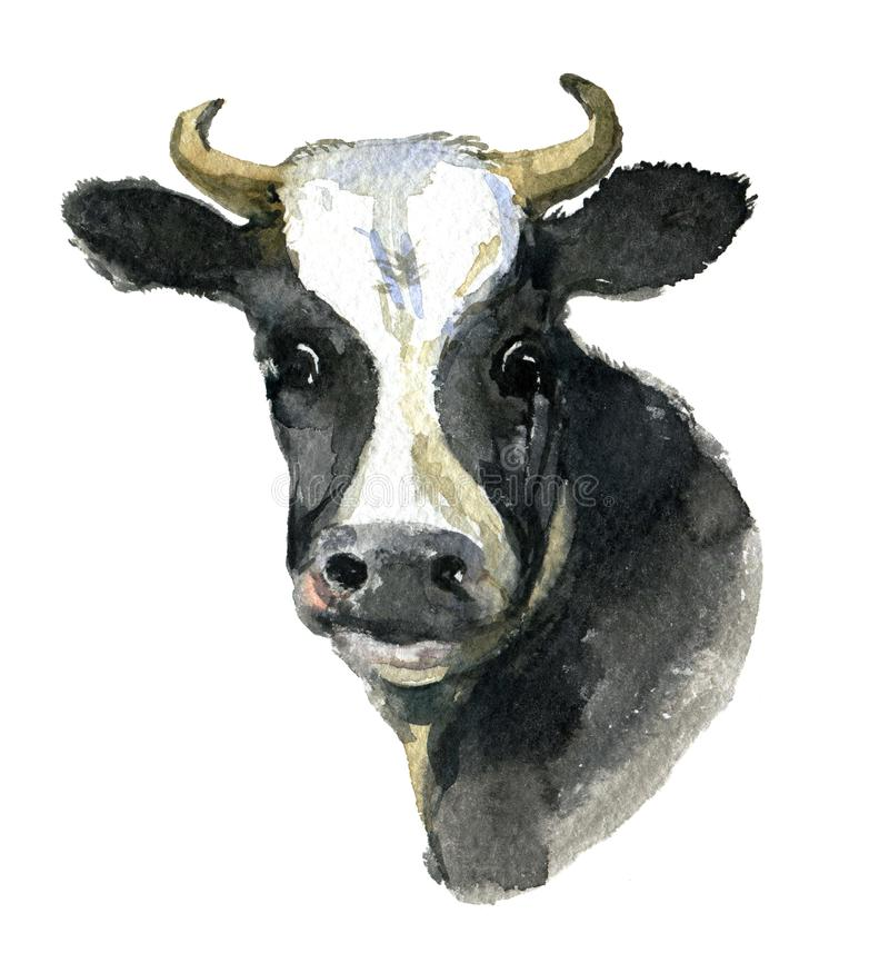 Portrait of a cow isolated on white, watercolor illustration royalty free illustration