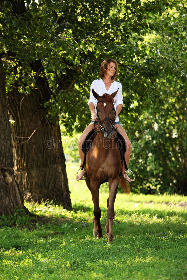 Portrait cowgirl with bay saddle horse. Dressage sport horse with rider in summer evening woods royalty free stock photos