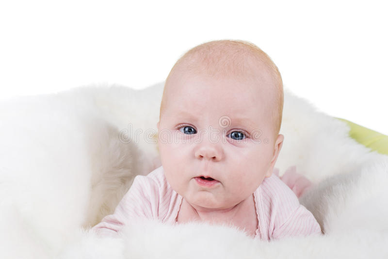 Portrait of a crawling baby on the bed stock image