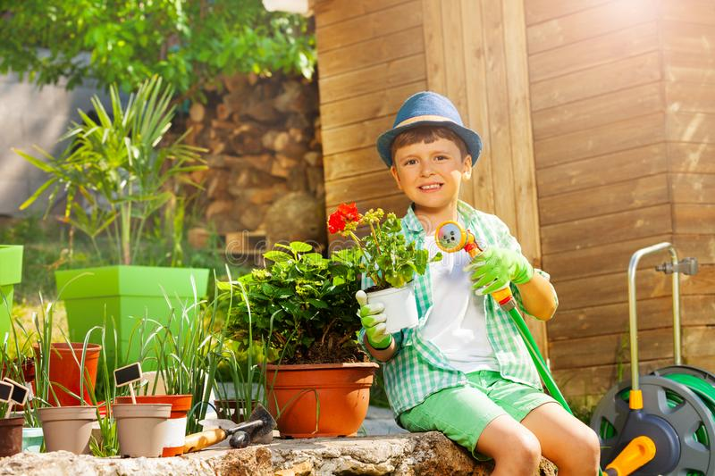 Boy watering plants in the garden at sunny day stock photography