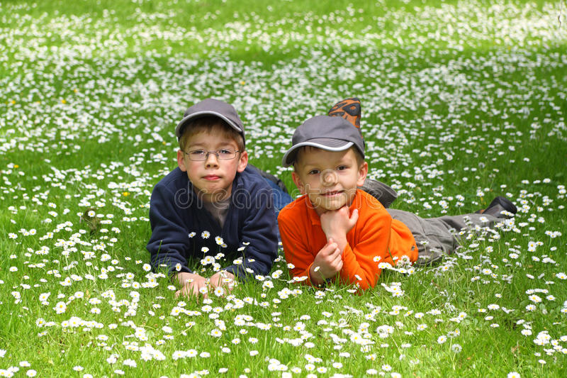 Portrait of cute brothers royalty free stock images