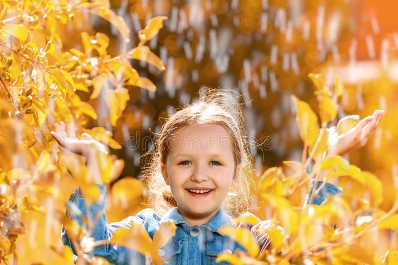 Portrait of a cute charming little girl standing in autumn park in the rain. The child stretched out his hands and collects the stock image