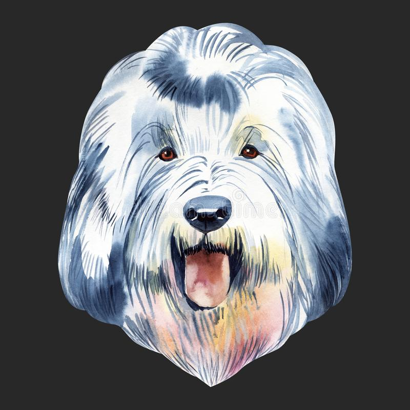 Portrait cute dog isolated on white background. Watercolor hand-drawn illustration. Popular breed dog. Greeting card royalty free stock images