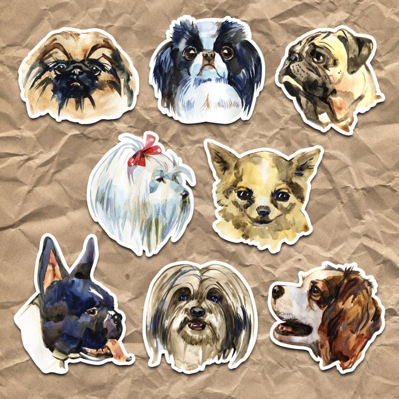 Portrait cute dog set isolated. Watercolor hand-drawn illustration. Popular decorative dog breeds. Greeting card design. stock illustration