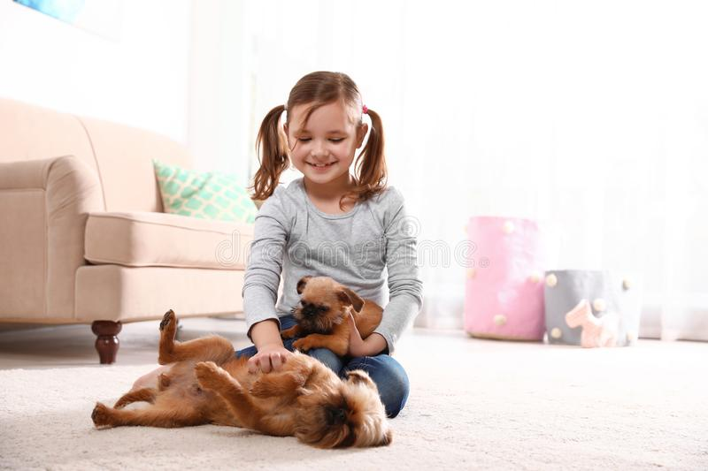 Portrait of cute girl with funny Brussels Griffon dogs at home. Loyal friends stock image