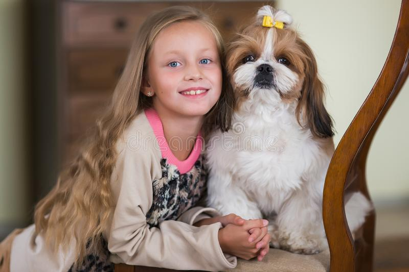 Portrait of a cute girl with your favorite dog shit tsu stock photography