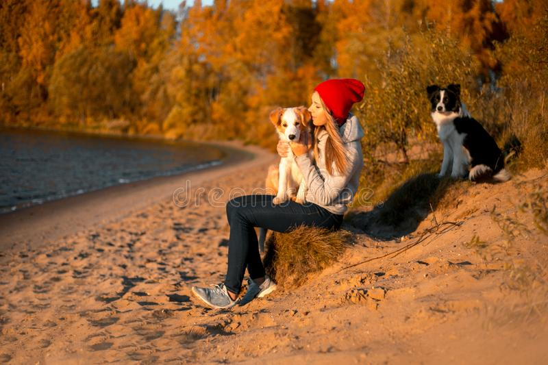 Portrait of happy girl with two funny border collie dog on beach at seaside. autumn yellow forest on background royalty free stock photo