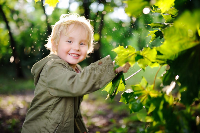 Portrait of cute happy little boy having fun in summer park after rain stock images