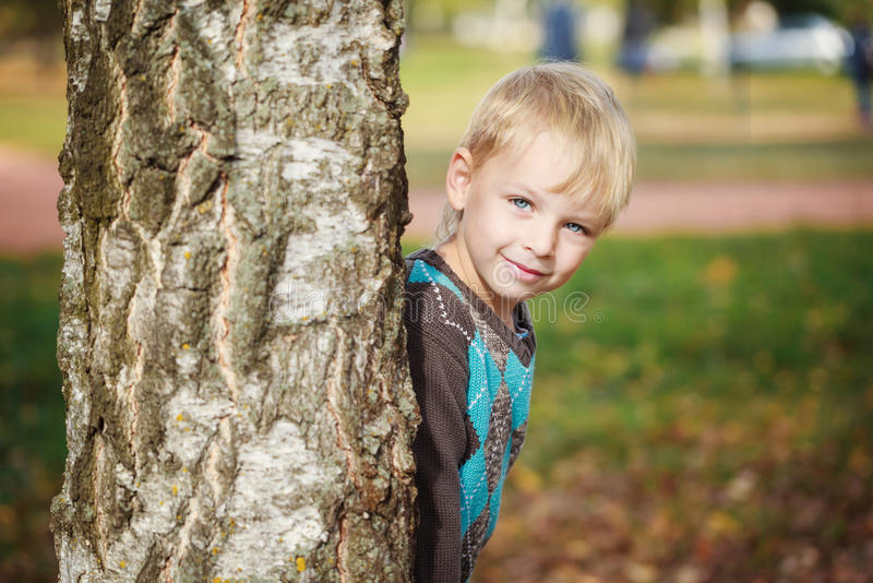 Portrait Cute little boy in a knitted sweater is playing behind a tree in autumn park, play at hide-and-seek royalty free stock images