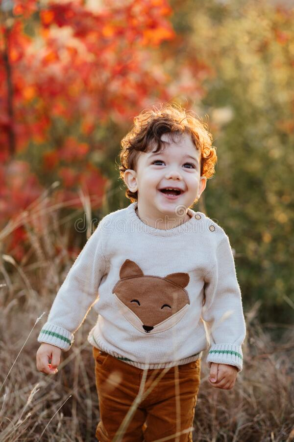 2 365 Boy Curly Hair Toddler Photos Free Royalty Free Stock Photos From Dreamstime