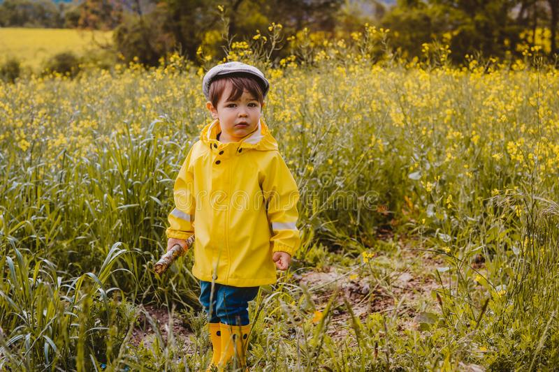 Portrait of cute little boy in yellow raincoat, rubber boots and cap holding wooden stick. In blooming rapeseed field royalty free stock photos