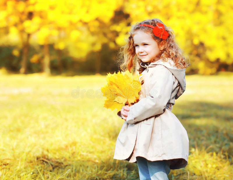 Portrait cute little girl child with yellow maple leafs royalty free stock image