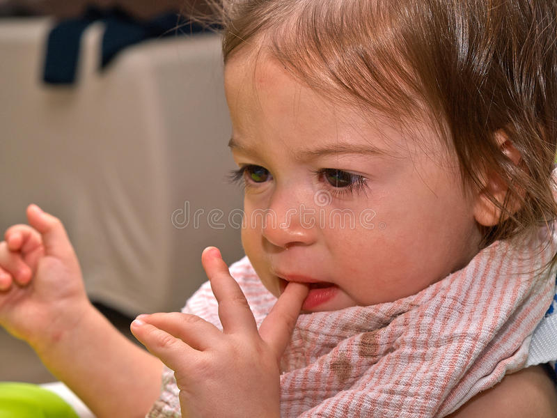Portrait of cute sad crying toddler girl royalty free stock image