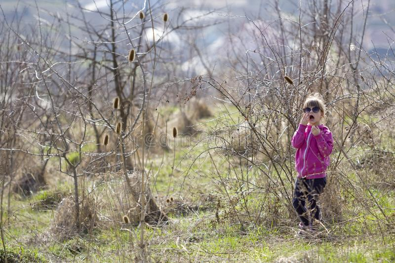 Portrait of cute small confused blond girl in casual pink clothing and dark sunglasses standing alone lost among dry prickly bush stock image