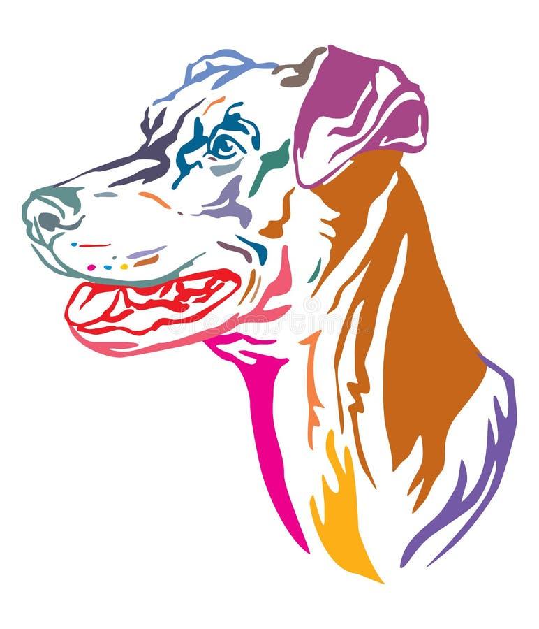 Portrait décoratif coloré d'illustration allemande de vecteur de Pinscher de chien illustration libre de droits