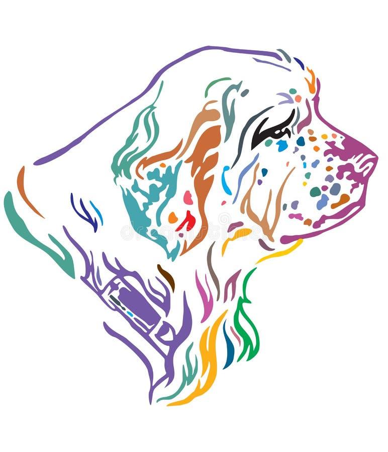 Portrait décoratif coloré d'illustration de vecteur d'épagneul de Clumber de chien illustration de vecteur