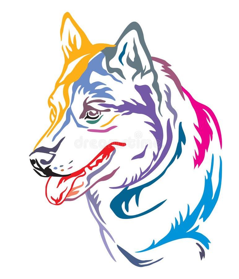 Portrait décoratif coloré de l'illustration enrouée sibérienne de vecteur de chien illustration libre de droits