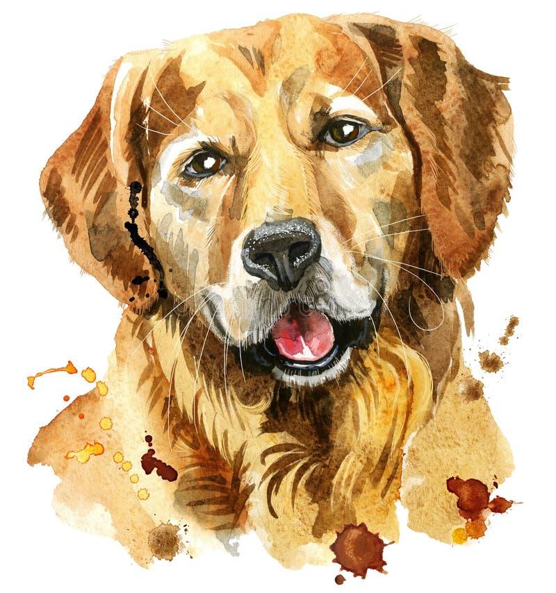 Portrait d'aquarelle de golden retriever illustration stock