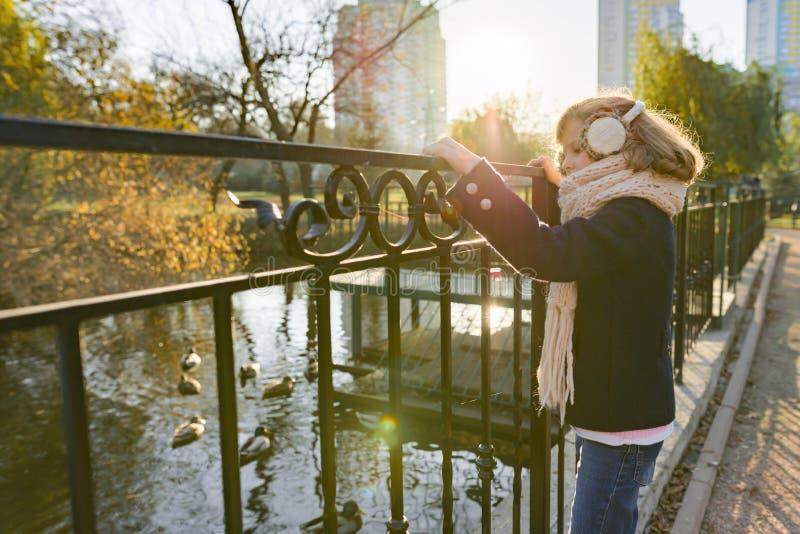 Portrait d'automne d'une fillette sur un pont dans un parc ensoleillé, enfant regardant les canards image libre de droits