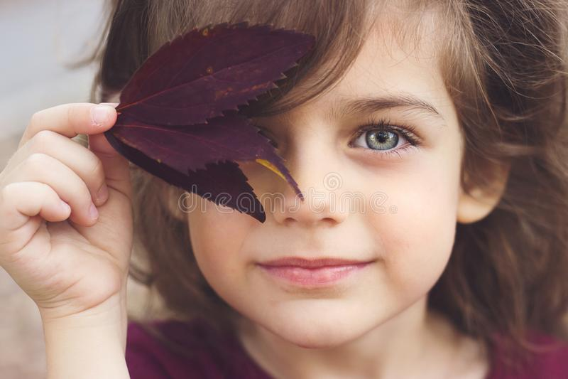 Portrait d'automne d'une petite fille avec de beaux yeux gris images libres de droits
