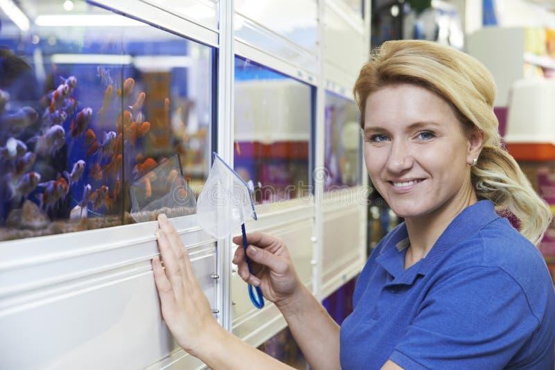 Portrait d'employé féminin dans le magasin d'animal familier photos stock