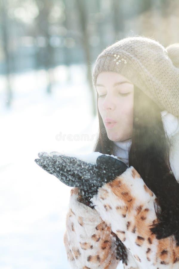 Portrait d'hiver de femme photo stock