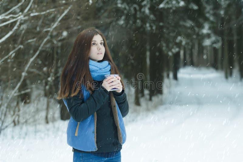 Portrait d'hiver de forêt de rêvasser la jeune dame tenant la tasse avec la boisson chaude pendant la tempête de neige dans la fo image libre de droits