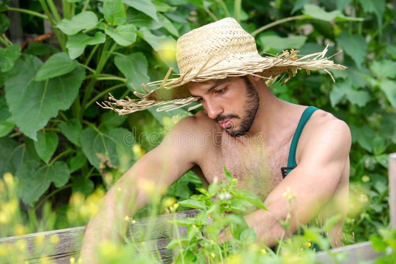 Portrait d'homme barbu avec le chapeau de paille détendant dans le jardin photographie stock libre de droits
