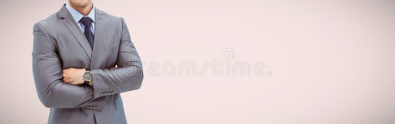 Portrait d'homme d'affaires futé dans le costume photos stock