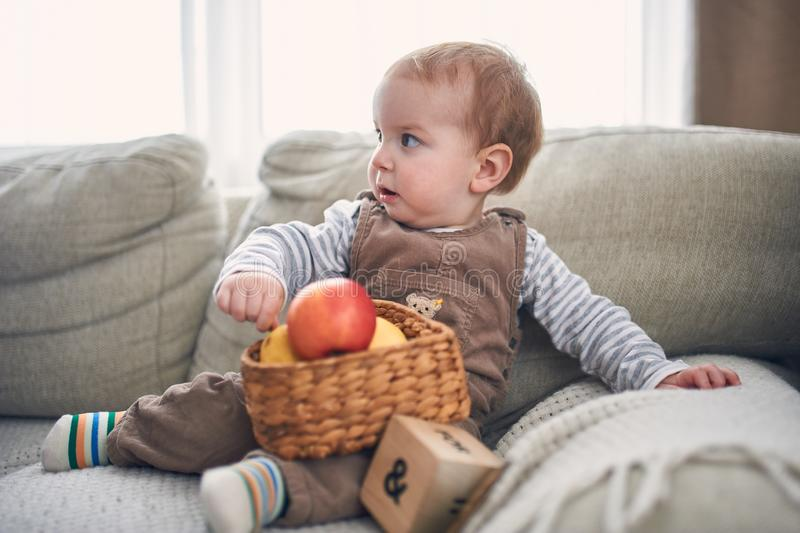 Portrait d'un bébé garçon de 1 an mignon s'asseyant sur un sofa image libre de droits