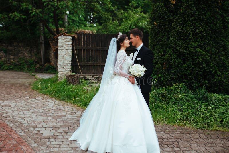 Portrait d'un couple l'épousant merveilleux photographie stock