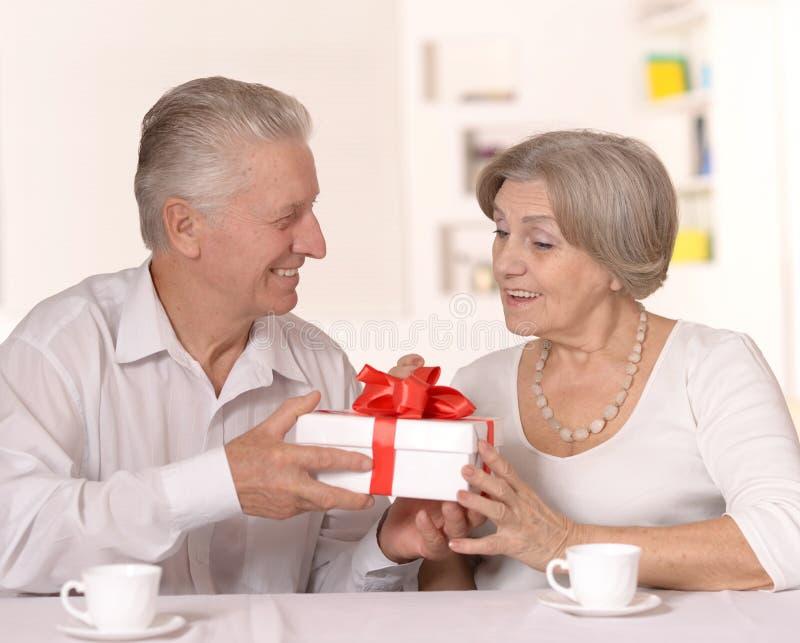 Portrait d'un couple plus ancien heureux photos stock