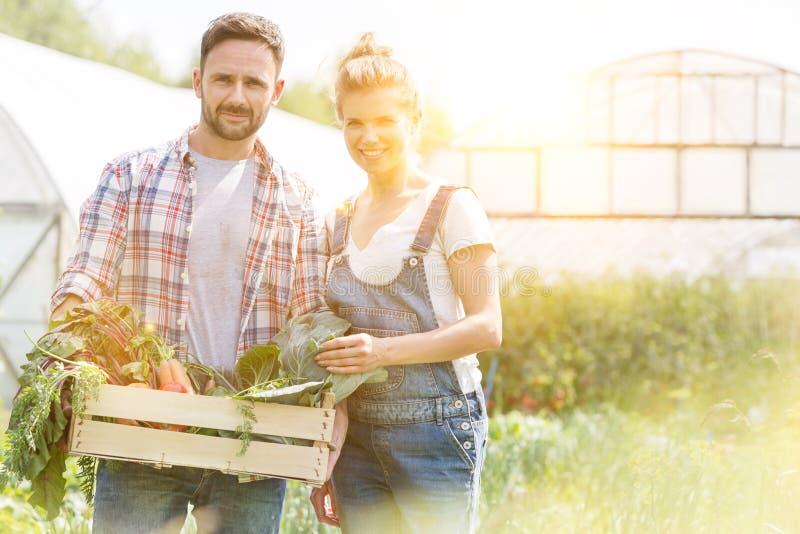 Portrait d'un couple souriant tenant des légumes en caisse à la ferme avec la lentille jaune en arrière-plan photos stock