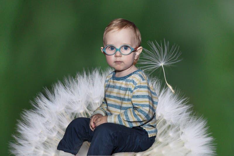 Portrait d'un enfant en bas âge sur un fond de pissenlit photos libres de droits