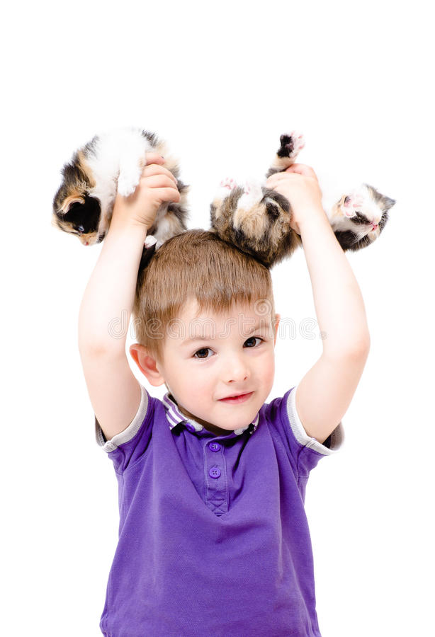 Portrait d'un garçon heureux avec des chatons dans les mains photographie stock