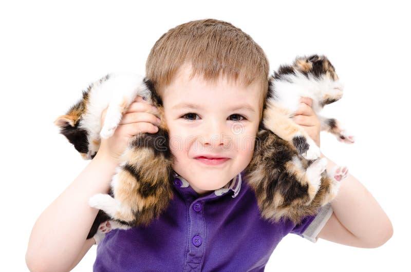 Portrait d'un garçon heureux jouant avec des chatons images libres de droits