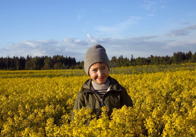 Portrait d'un garçon sur un champ jaune des fleurs image stock
