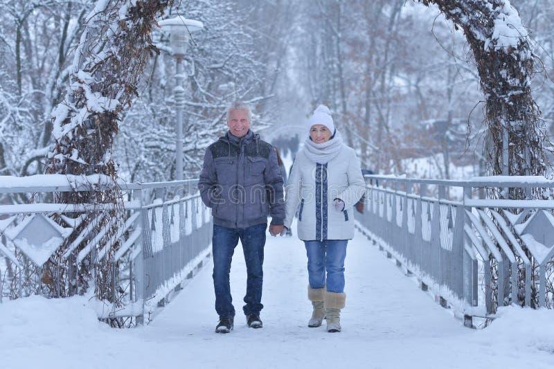 Portrait d'un heureux couple senior en hiver à l'extérieur images libres de droits