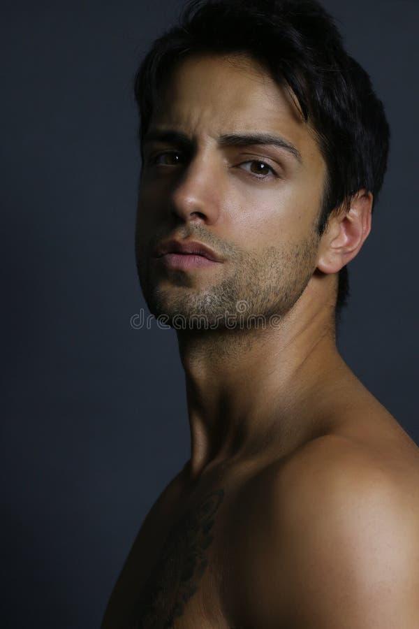 Portrait d'un type brun beau photos stock