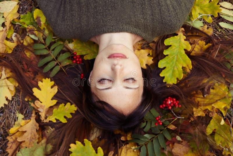 Portrait d'une belle brune en parc d'automne image stock