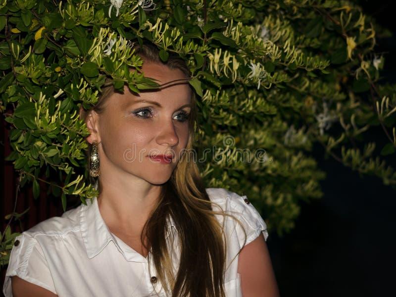 Portrait d'une belle femme à côté d'un buisson fleurissant la nuit photos libres de droits