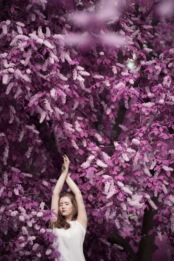 Portrait d'une belle fille parmi le feuillage de ressort et la cerise d'oiseau de fleurs image stock