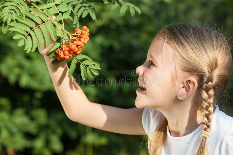 Portrait d'une belle jeune fille en parc photographie stock libre de droits