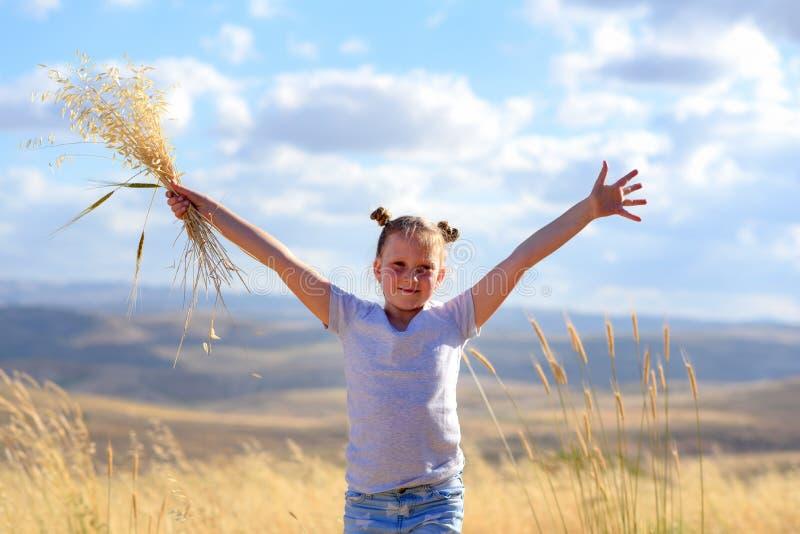 Portrait d'une belle petite fille au milieu d'un champ de bl? image libre de droits