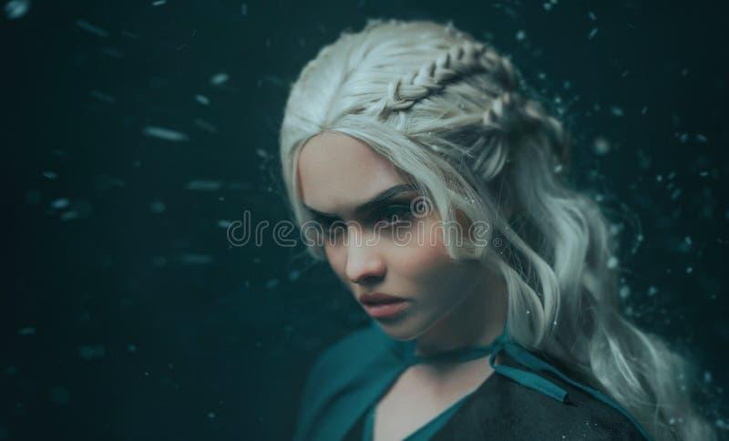 Portrait d'une fin blonde de fille  Obscurité de fond avec la neige volante, cendre Cheveux blancs avec le tressage créatif ?moti photographie stock libre de droits