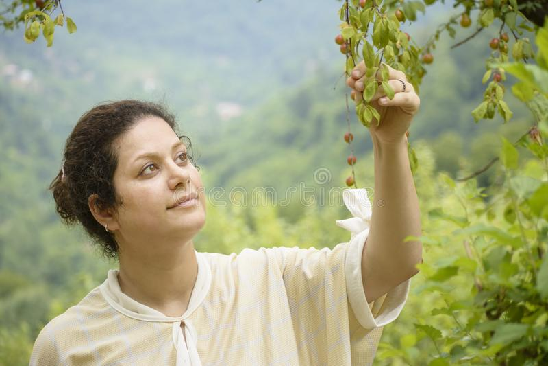 Portrait d'une jeune femme tenant un concept de soin d'agriculture de branche de prunier photo stock