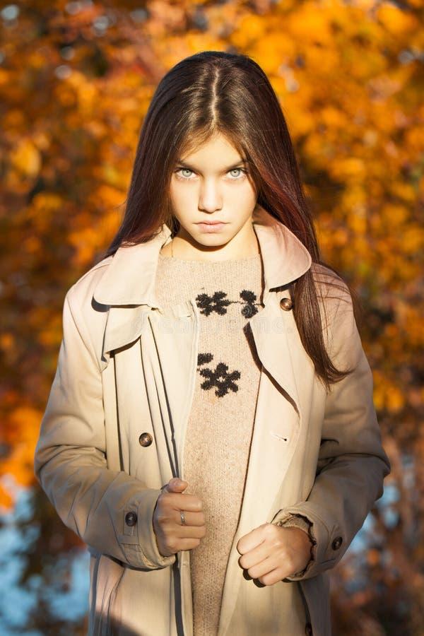 Portrait d'une petite fille de belle brune, extérieur de parc d'automne image libre de droits