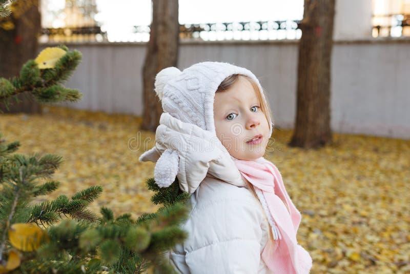 Portrait d'une petite fille mignonne en parc d'automne photos libres de droits