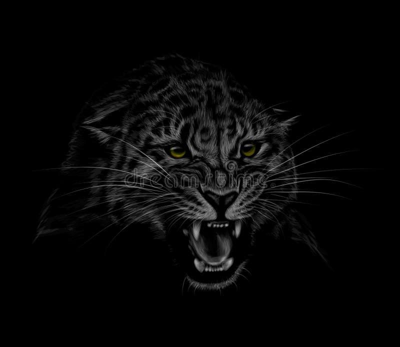Portrait d'une tête de léopard sur un fond noir Grimacerie d'un léopard illustration stock